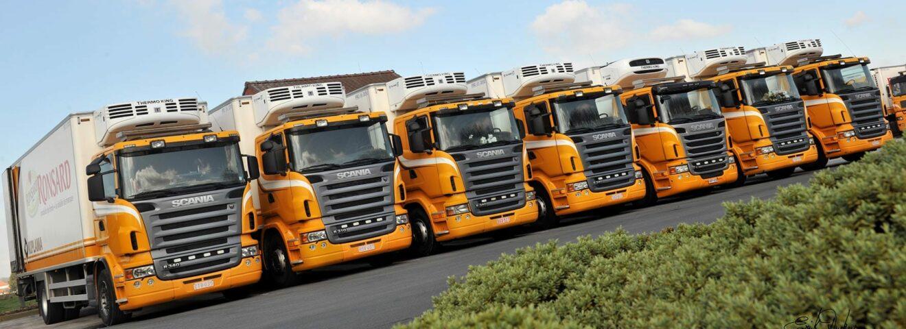 Yellow trucks ronsard